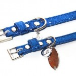 Blue Bling Modern Leather Collar